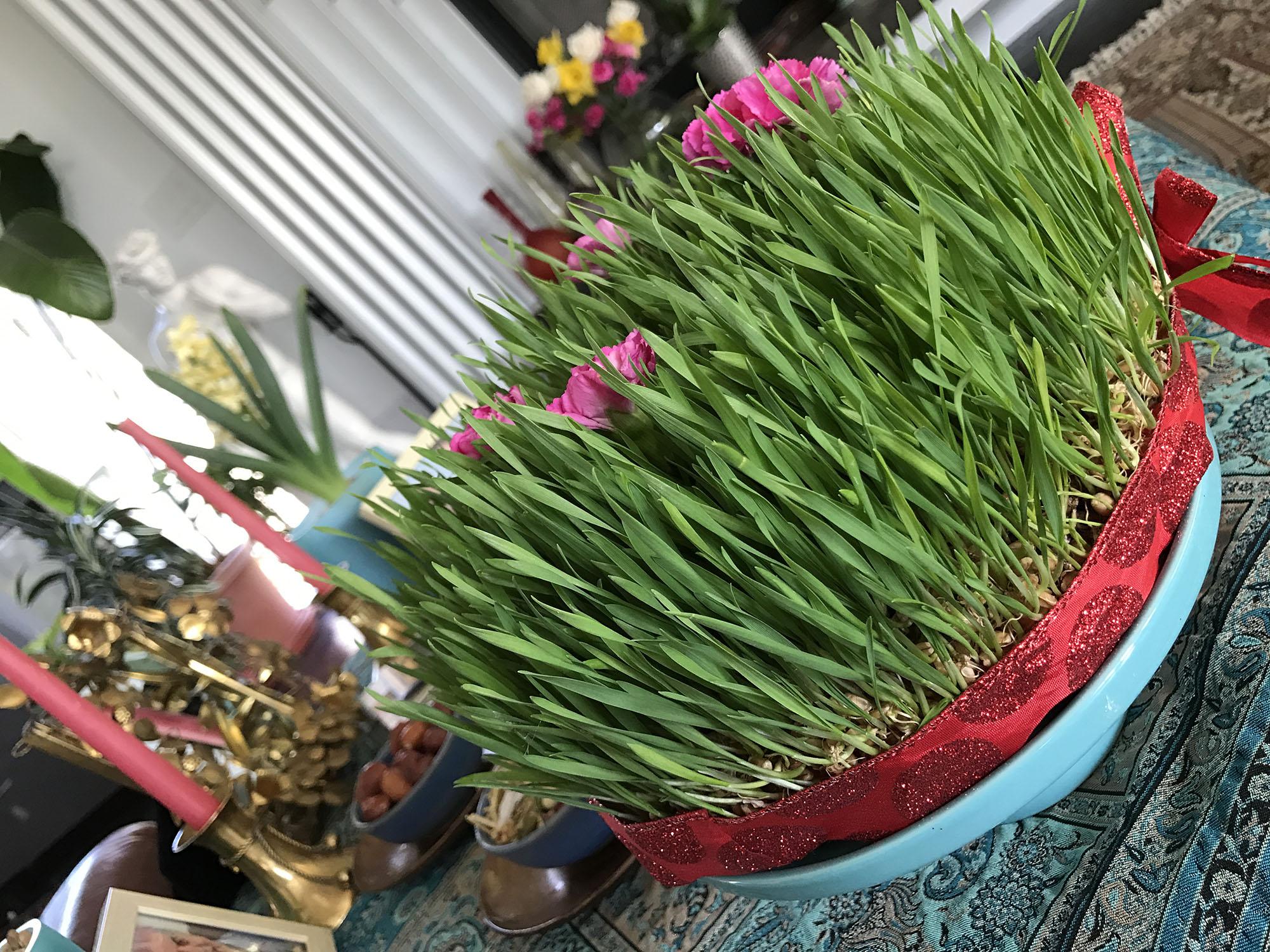 Все, что вы хотели знать про иранский Новый Год: сидза бедар на 13 день